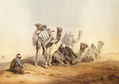 Middle East Views II
