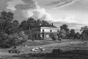 Wimbledon House by JP Neale