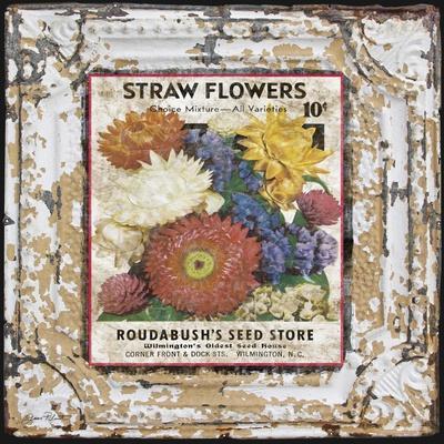 https://imgc.allpostersimages.com/img/posters/jp0543-tin-tile-straw-flowers_u-L-Q1CASTQ0.jpg?artPerspective=n
