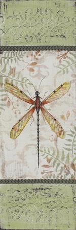 https://imgc.allpostersimages.com/img/posters/jp2563-vintage-butterfly_u-L-Q1CAF1S0.jpg?artPerspective=n