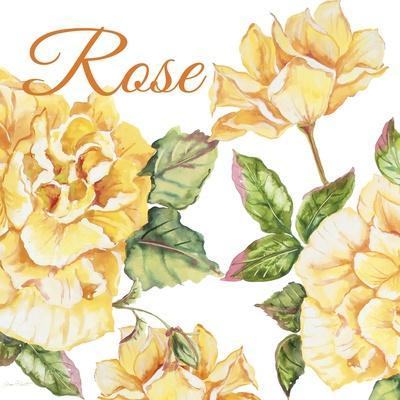 https://imgc.allpostersimages.com/img/posters/jp2591-rose-b_u-L-Q1CAXUB0.jpg?artPerspective=n