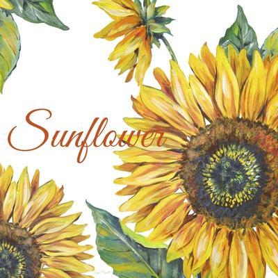 https://imgc.allpostersimages.com/img/posters/jp2592-sunflower_u-L-Q1CAXD80.jpg?artPerspective=n