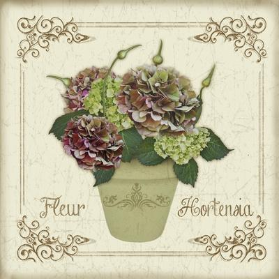 https://imgc.allpostersimages.com/img/posters/jp3022-fleur-hortensia_u-L-Q1CAL4W0.jpg?artPerspective=n