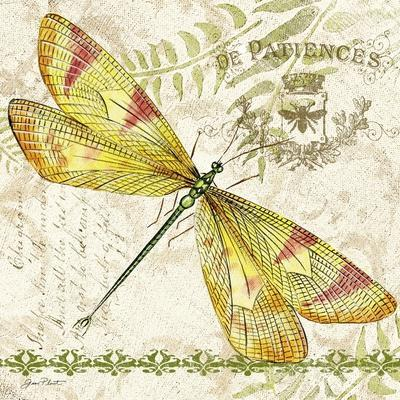 https://imgc.allpostersimages.com/img/posters/jp3429-dragonfly-daydreams_u-L-Q1CAJJG0.jpg?artPerspective=n