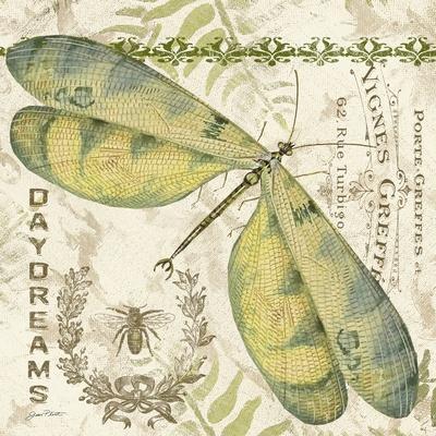 https://imgc.allpostersimages.com/img/posters/jp3430-dragonfly-daydreams_u-L-Q1CAKFJ0.jpg?artPerspective=n