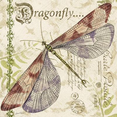 https://imgc.allpostersimages.com/img/posters/jp3431-dragonfly-daydreams_u-L-Q1CAJQA0.jpg?artPerspective=n