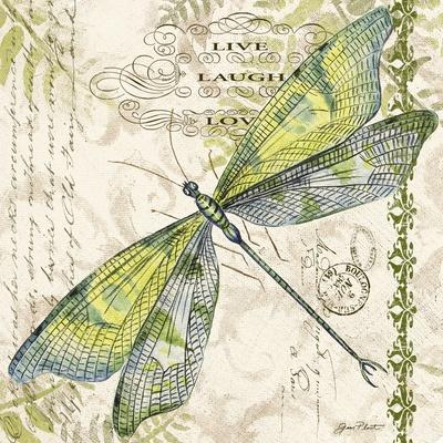 https://imgc.allpostersimages.com/img/posters/jp3432-dragonfly-daydreams_u-L-Q1CAJW30.jpg?artPerspective=n