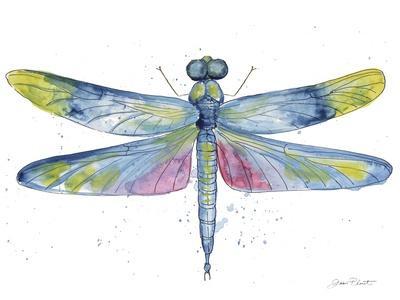 https://imgc.allpostersimages.com/img/posters/jp3439-dragonfly-bliss_u-L-Q1CALQ10.jpg?artPerspective=n