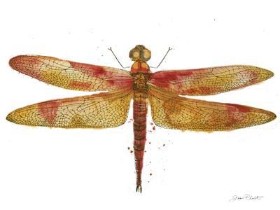 https://imgc.allpostersimages.com/img/posters/jp3442-dragonfly-bliss_u-L-Q1CANUS0.jpg?artPerspective=n