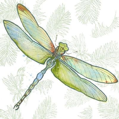 https://imgc.allpostersimages.com/img/posters/jp3494-dragonfly-bliss_u-L-Q1CAR300.jpg?artPerspective=n