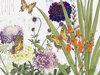 https://imgc.allpostersimages.com/img/posters/jp3833-florals-and-butterflies_u-L-Q1CA7NG0.jpg?artPerspective=n