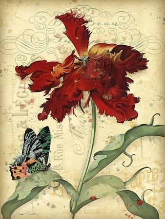 https://imgc.allpostersimages.com/img/posters/jp3834-french-florals_u-L-Q1CA6AC0.jpg?artPerspective=n