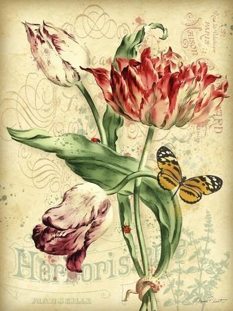 https://imgc.allpostersimages.com/img/posters/jp3835-french-florals_u-L-Q1CA6XT0.jpg?artPerspective=n