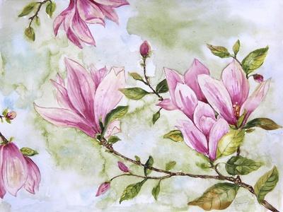 https://imgc.allpostersimages.com/img/posters/jp3877-magnolia_u-L-Q1CAOPU0.jpg?artPerspective=n