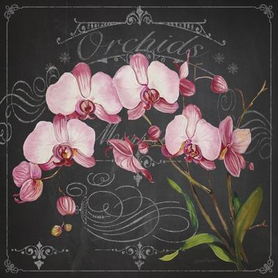https://imgc.allpostersimages.com/img/posters/jp3890-orchids_u-L-Q1CAQFJ0.jpg?artPerspective=n