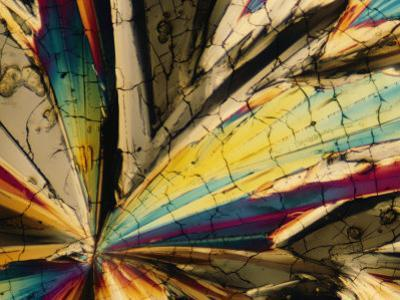 Magnified View of Sugar Crystals