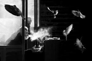 The Man of Pigeons by Juan Luis Duran