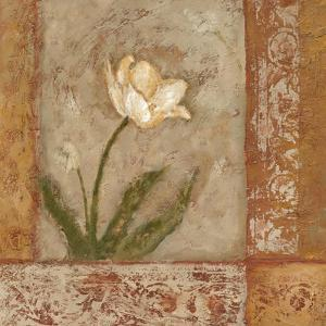 Morning Floral I by Judi Bagnato