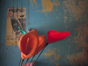 Colorful Still Life, Oaxaca, Mexico by Judith Haden