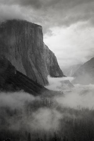 California. Yosemite National Park by Judith Zimmerman