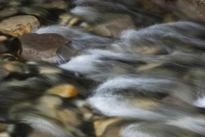 Canada, Alberta. Detail of river rocks and stream, Johnston Canyon, Banff National Park. by Judith Zimmerman