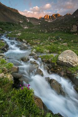 Colorado, Rocky Mountain Sunset in American Basin with Stream and Alpine Wildflowers by Judith Zimmerman