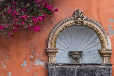 Mexico, Street Fountain Built into a Salmon Colored Wall with Fuschia Flowering Branch