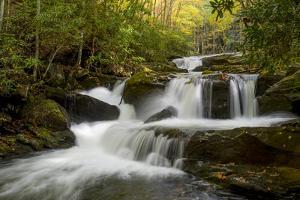 Tennessee, Great Smoky Mountains National Park. Autumn Trees and Waterfall on the Little River by Judith Zimmerman