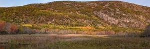 USA, Maine. Autumn foliage near The Beehive, Panoramic, Acadia National Park. by Judith Zimmerman