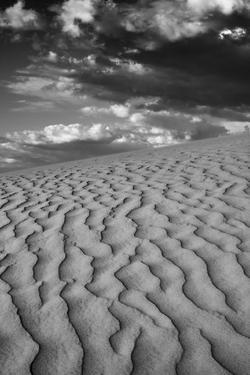 USA, Mojave Trails National Monument, California. Black and white image of windblown sand dune and  by Judith Zimmerman