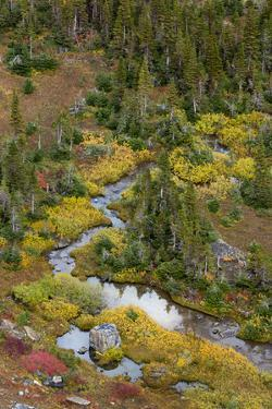 USA, Montana. Autumn in Glacier National Park. by Judith Zimmerman