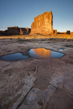 USA, Utah. The Organ reflected in an ice covered pool, Arches National Park. by Judith Zimmerman