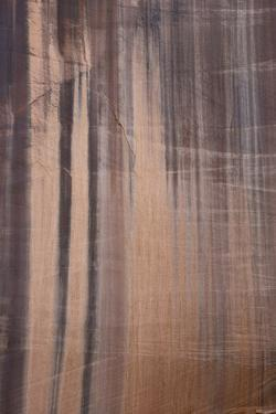 USA, Utah. Water stained canyon wall detail in Long Canyon, Grand Staircase-Escalante NM by Judith Zimmerman