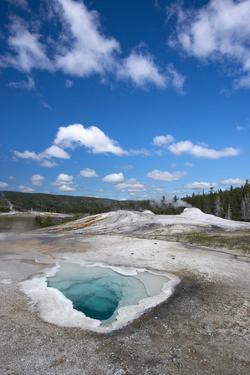USA, Wyoming. Heart Spring, Yellowstone National Park. by Judith Zimmerman