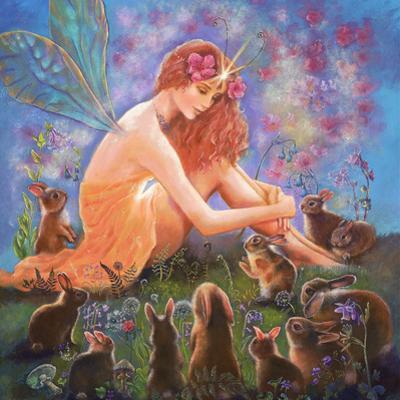 Fairy and the Velveteen Rabbit by Judy Mastrangelo
