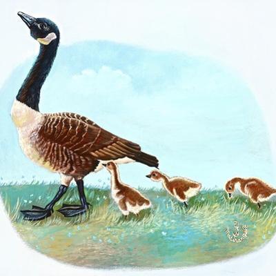 Mother Goose by Judy Mastrangelo