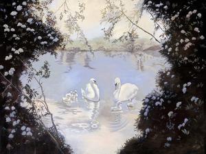 Swan Lake by Judy Mastrangelo