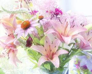 Pink Bouquet by Judy Stalus