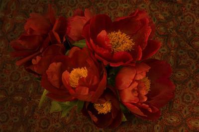 Red Peonies I by Judy Stalus