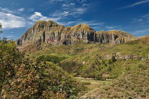 Amboro National Park by Juergen Ritterbach
