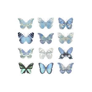 Butterfly Study in Blue I by Julia Bosco