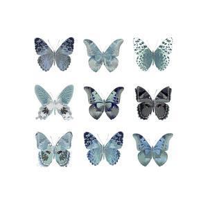 Butterfly Study in Blue II by Julia Bosco