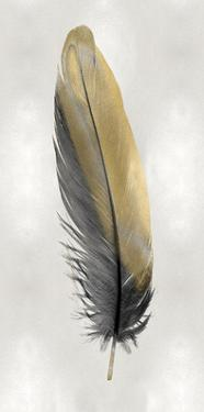 Gold Feather on Silver I by Julia Bosco
