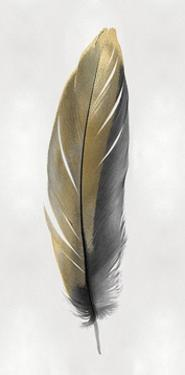 Gold Feather on Silver II by Julia Bosco