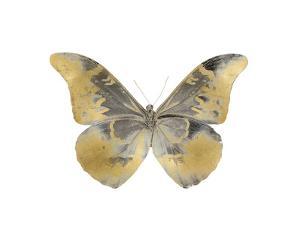 Golden Butterfly II by Julia Bosco