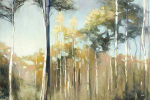 Aspen Reverie by Julia Purinton