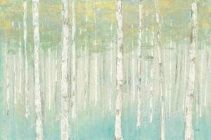 Birches at Sunrise by Julia Purinton