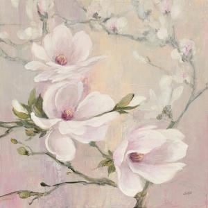 Blushing Magnolias by Julia Purinton