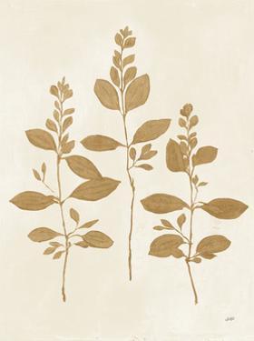 Botanical Study IV Gold Crop by Julia Purinton