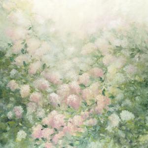 Dreamy by Julia Purinton